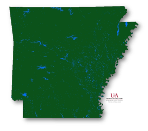 Map of Arkansas waterbodies