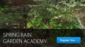 Spring Rain Garden Academy
